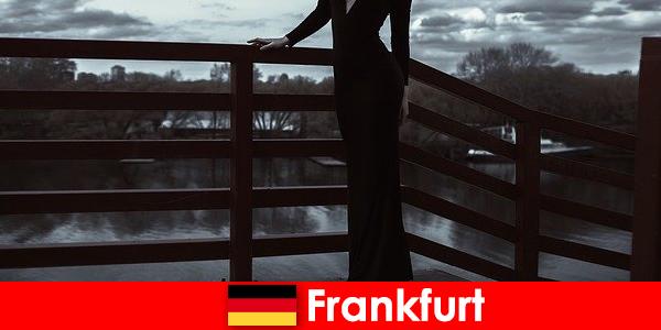 कामुक प्रबंधक फ्रैंकफर्ट में एस्कॉर्ट्स मुख्य हूं अपने ग्राहकों को सिर से पैर तक लाड़ प्यार