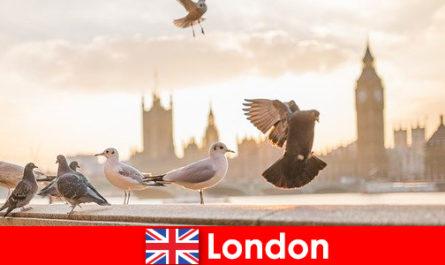 अंतरराष्ट्रीय आगंतुकों के लिए लंदन में ब्याज के स्थान
