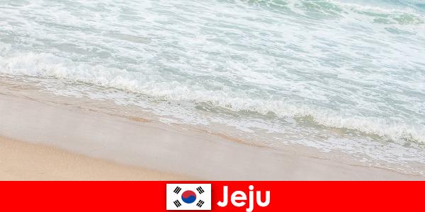 अपने ठीक रेत और साफ पानी समुद्र तट पर परिवार की छुट्टियों के लिए एक आदर्श जगह के साथ जीजू