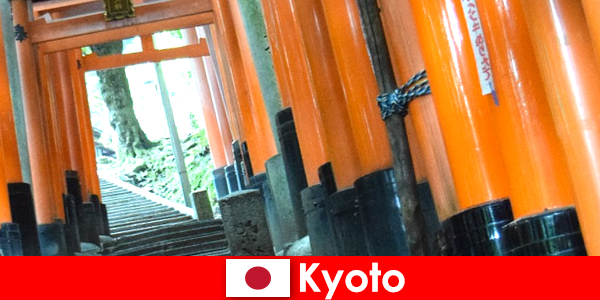क्योटो जापान में मछली पकड़ने गांव विभिन्न यूनेस्को आकर्षण प्रदान करता है
