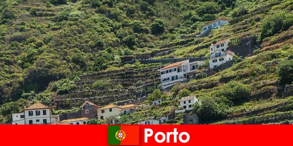 दुनिया भर से शराब प्रेमियों के लिए पोर्टो छुट्टी गंतव्य