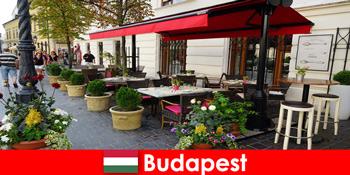 ठीक भोजन के लिए एक स्वाद के साथ आगंतुकों के लिए बुडापेस्ट हंगरी में लघु तोड़ गंतव्य