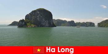 हा लांग वियतनाम में रॉक दिग्गजों के लिए छुट्टियों के लिए नाव पर्यटन