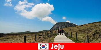 पर्यटकों को जीजू दक्षिण कोरिया में शानदार प्राकृतिक परिदृश्य के माध्यम से वृद्धि