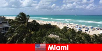 पाम रेतीले समुद्र तटों तरंगों पैराडिसियाकल मियामी संयुक्त राज्य अमेरिका में दीर्घकालिक छुट्टियों का इंतजार
