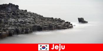 विदेशियों ने जेजू दक्षिण कोरिया में लोकप्रिय भ्रमण का पता लगाया