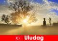लंबी पैदल यात्रा छुट्टियों Uludag तुर्की में सुंदर प्रकृति का आनंद