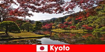 प्रसिद्ध शरद ऋतु पत्ते रंग के लिए क्योटो जापान के लिए विदेश यात्रा