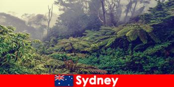 राष्ट्रीय उद्यानों की प्रभावशाली दुनिया में सिडनी ऑस्ट्रेलिया की खोज