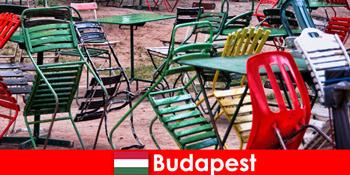 दिलचस्प बिस्टरो, बार और रेस्तरां सुंदर बुडापेस्ट हंगरी में यात्रियों का इंतजार